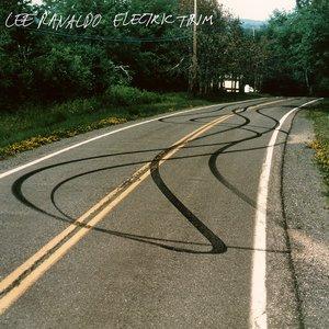 Electric Trim