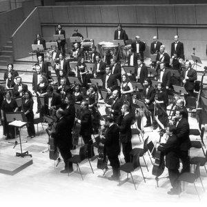 The World Festival Symphony Orchestra 的头像