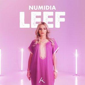 Avatar for Numidia