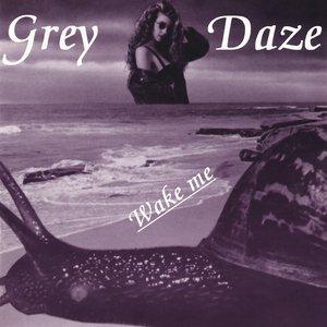 Image for 'Wake Me'