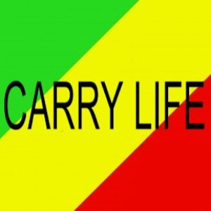 Avatar for Carry Life