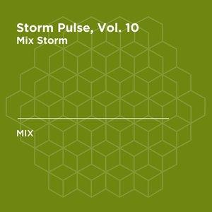 Storm Pulse, Vol. 10 (DJ Mix)
