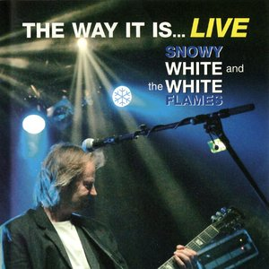 The Way It Is... Live