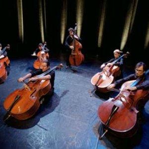 Avatar de L'Orchestre de Contrebasses