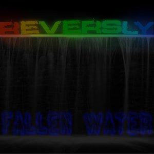 Fallen Water
