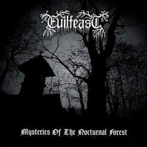 Mysteries of the Nocturnal Forest