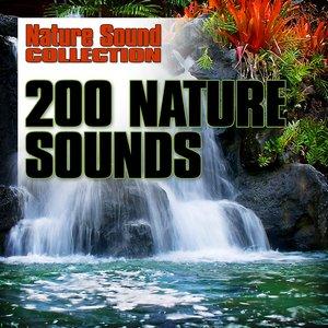 200 Nature Sounds