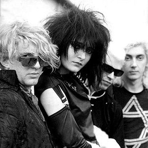 Avatar de Siouxsie and the Banshees