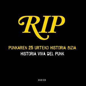 Historia viva del punk