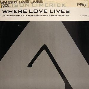 Dance Vault Mixes - Where Love Lives