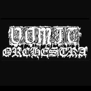 Avatar de Vomit Orchestra