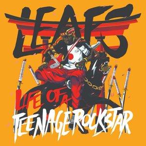Life Of A Teenage Rockstar