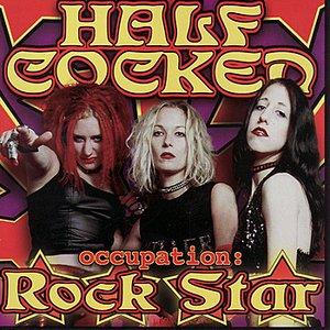 Occupation: Rock Star