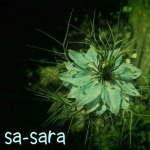Avatar for sa-sara
