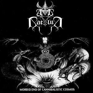 Morbid End Of Cannibalistic Cosmos