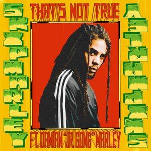 "That's Not True (feat. Damian ""Jr. Gong"" Marley) - Single"