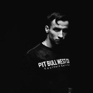 Unreleased Track (Pre DJ Rabies)   AK-47 Lyrics, Song