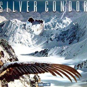 Avatar for Silver Condor