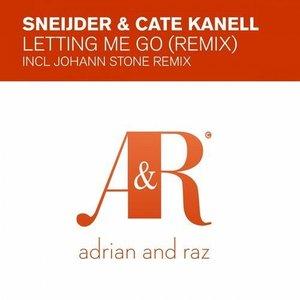 Letting Me Go (Remix)
