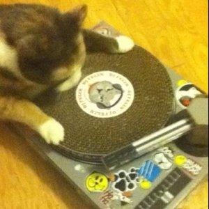 Avatar for DJ McBastard