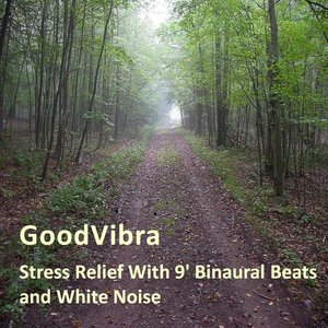Stress Relief With 9' Binaural Beats and White Noise