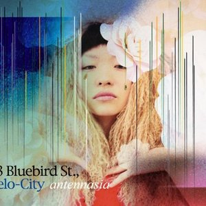 23 Bluebird Street, Velo-City