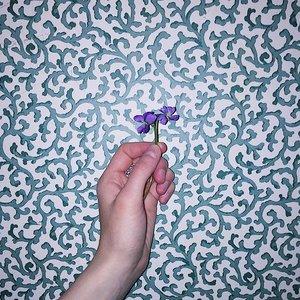 One, Violet