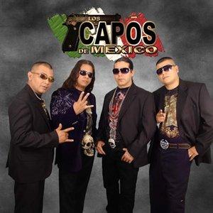 Avatar for Los Capos De Mexico