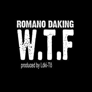 W.T.F (what the f*ck)