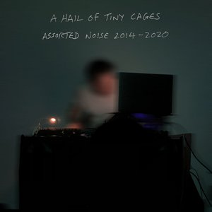 A Hail of Tiny Cages | Assorted Noise 2014-2020