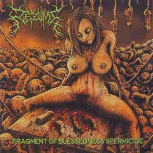 Fragment of Blessedness Spermicide