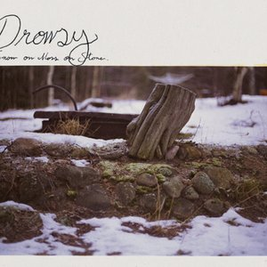 Snow On Moss On Stone
