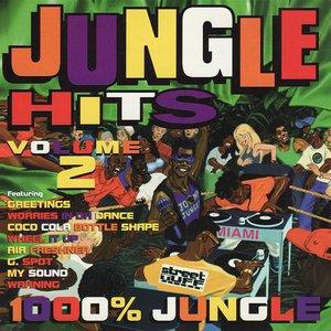 Jungle Hits, Vol. 2