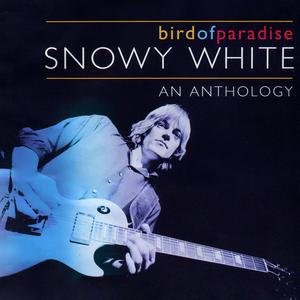 Bird of Paradise - An Anthology