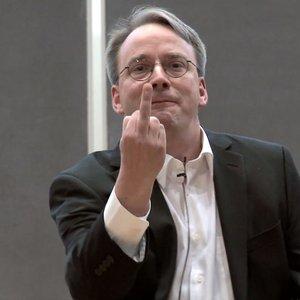 Bild für 'Linus Torvalds'