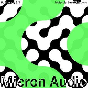Album artwork for Molecular Level Solutions by DJ Stingray 313