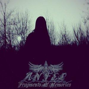 Fragments of Memories