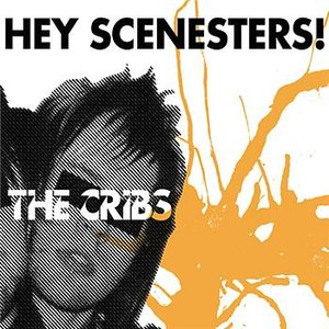 Hey Scenesters!