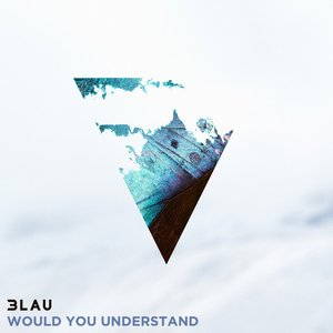 Would You Understand (feat. Carly Paige)