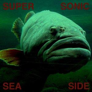 Avatar for Supersonic Seaside