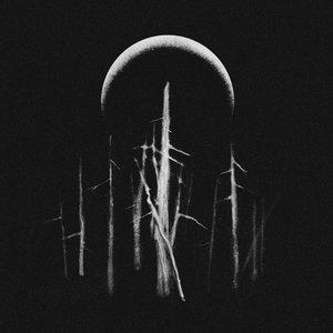 Faerie Court (Under Moon) - Single