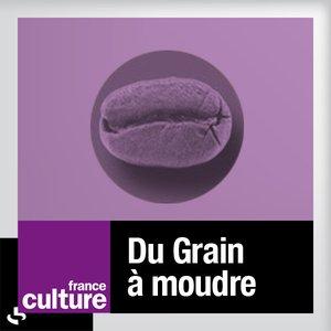 Avatar for Hervé Gardette