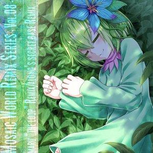Mosaic World Remix Series -Vol.08-