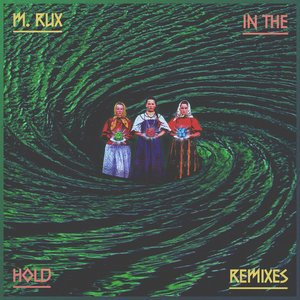 In the Hold (Remixes)