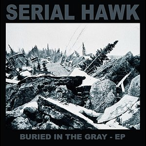 Buried in the Gray - EP