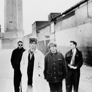 Avatar de Echo & the Bunnymen