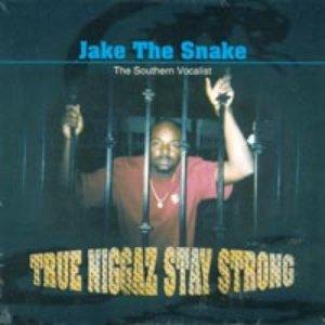 Avatar di Jake the Snake