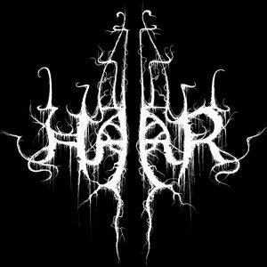 Avatar for Haar