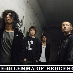 Avatar de the dilemma of hedgehog