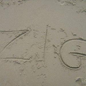 Avatar for Zig